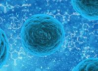 Stem cell blog post
